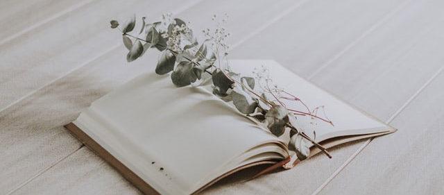 【英語の曲一覧】A.A.ミルンの詩が大好きです。それに曲をつけて宅録しました。